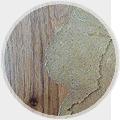 精美的家具涂料地板中暗藏苯甲醛等有害物质
